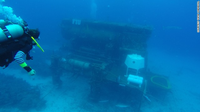 With their Mission 31 project, Fabien Cousteau and a team of researchers are spending what they hope will be 31 straight days in this undersea habitat, 63 feet beneath the ocean surface in the Florida Keys.