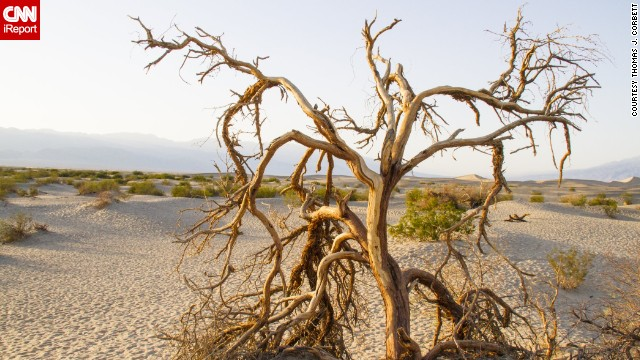 "Death Valley National Park, which straddles Nevada and California, is the lowest point in North America. <a href='http://ireport.cnn.com/docs/DOC-1127594'>Thomas J. Corbett</a> visited in February 2014 and found it ""mostly void of life but beautiful in geological colors."""