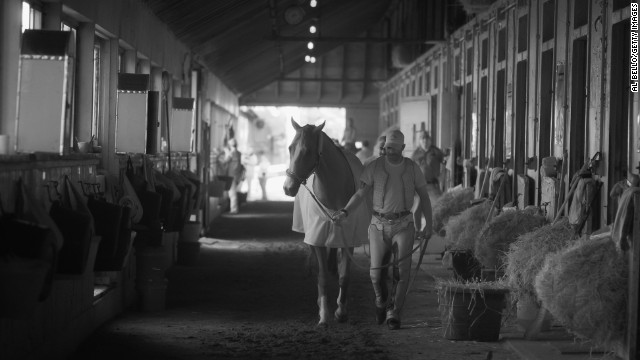"California Chrome, seen here with exercise rider Willie Delgado in his barn after training at Belmont, has been dubbed a horse racing ""rock star."""