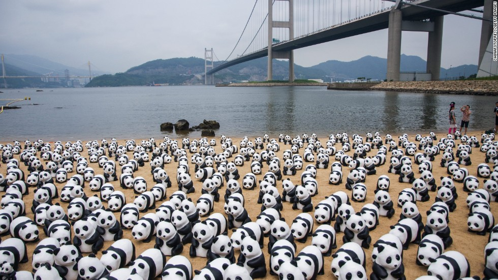 Beaches in Hong Kong can get pretty crowded! For the latest leg of their year-long world tour, 1,600 papier-mache pandas created by French artist Paulo Grangeon are invading Hong Kong in June, causing a near meltdown on social media. Grangeon created the panda project in 2008 in collaboration with the World Wide Fund for Nature to raise awareness of the endangered creatures. The sculptures represent the estimated 1,600 pandas that remain in the wild.