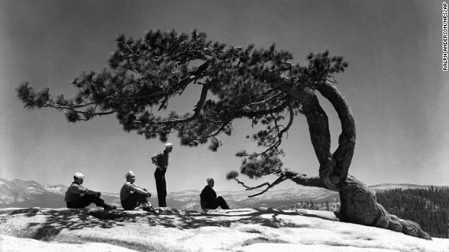 Sailors gather near a tree on the park's Sentinel Dome on July 24, 1944. The Navy took over the<a href='http://www.nps.gov/yose/historyculture/navy-hospital.htm' target='_blank'> Ahwahnee Hotel </a>during World War II and used it as a convalescent hospital.