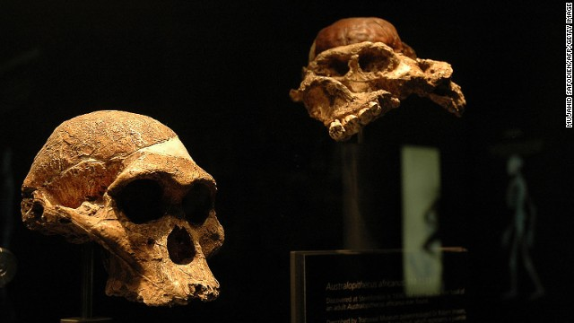 Maropeng is the official visitor center of the Cradle of Humankind, a UNESCO World Heritage Site and reportedly where our human ancestors settled 3 million years ago. The center includes fossils found near the Sterkfontein Caves.