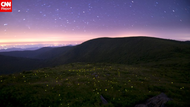 Fireflies use their bioluminescence to attract mates during warm summer nights. <a href='http://ireport.cnn.com/docs/DOC-1148774'>Spencer Black</a> captured these love bugs in action during a trip to the Great Smoky Mountains National Park in Gatlinburg, Tennessee.