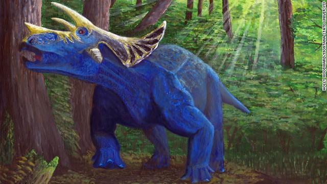 Los cuernos del triceratops tardaron un millón de años en aparecer