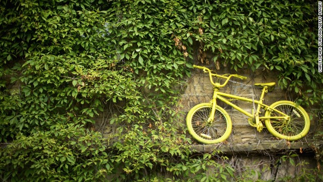 An iconic yellow bicycle mingles in between the Ivy at a cottage located a