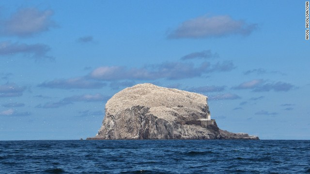 "SCOTLAND: ""Bass Rock - Only 40km from the Scottish capital Edinburgh, Bass Rock is home to the world's largest single rock colony of Atlantic gannets. Once Scotland's answer to Alcatraz, it's now swamped by 150,000 of these huge seabirds, which turn the Island white during the summer breeding season."" - CNN's Nicol Nicolson. Follow Nicol (<a href='http://instagram.com/nicolnic' target='_blank'>@nicolnic</a>) and other CNNers along on Instagram at <a href='http://instagram.com/cnn' target='_blank'>instagram.com/cnn</a>."