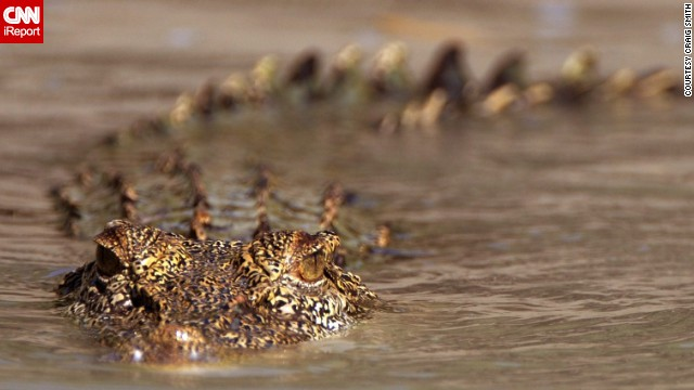 """The Kimberleys are hot, primitive, the way parts of the earth must have looked millions of years ago. No people, just nature,"" said Craig Smith, who traveled to the Kimberley, a remote region of Western Australia, in April. The region is known for its complex landscapes and wildlife, like this saltwater crocodile."