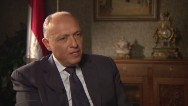 Shoukry: Egypt's Image Tarnished