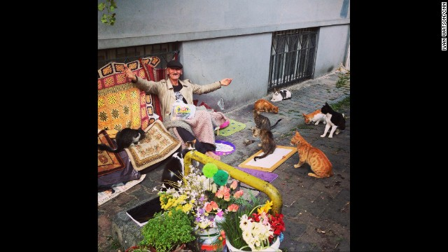 "ISTANBUL: ""Happiness is a street full of friendly (hungry) cats."" - CNN's Ivan Watson, July 7. Follow Ivan (<a href='http://instagram.com/ivancnn' target='_blank'>@ivancnn</a>) and other CNNers along on Instagram at <a href='http://instagram.com/cnn' target='_blank'>instagram.com/cnn</a>."