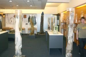Museo Falo de Islandia (Reikiavik)