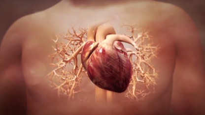 Can heart damage be reversed?