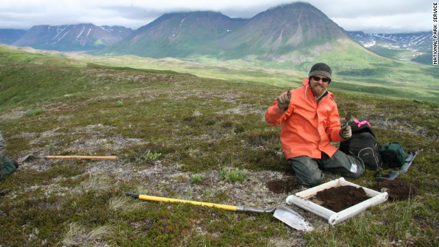 Denali National Park in Alaska is the site of a recent find: tracks from hadrosaurs, plant-eating dinosaurs that roamed nearly 70 million years ago.