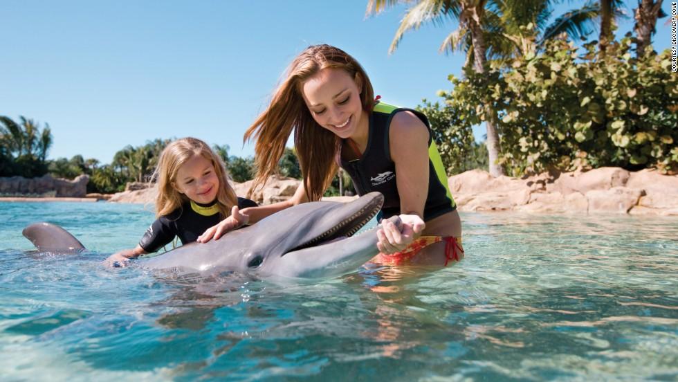 Los mejores parques de diversiones: Discovery Cove