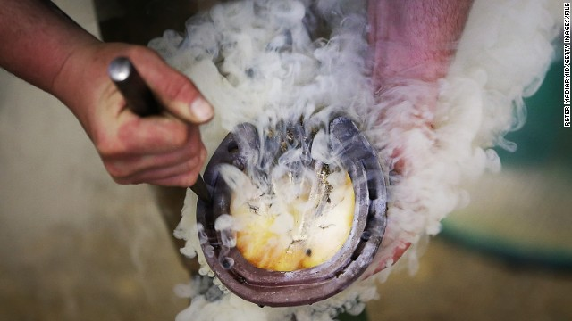 Farriers use an array of tools such as knives, nippers, rasps and tongs to prepare both the shoe and the horse's foot. The hot shoe is then applied to the hoof.
