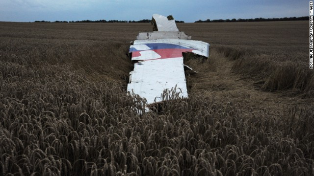 A large piece of the plane lies on the ground.
