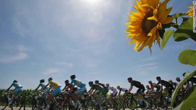JULY 18 - CHAMROUSSE, FRANCE: The pack riding with Italy's <a href='http://cnn.com/2014/07/06/sport/cycling-cavendish-tour-de-france/'>Vincenzo Nibali</a>, wearing the overall leader's yellow jersey, pass a field of sunflowers during the thirteenth stage of the Tour de France cycling race over 197.5 kilometers (123 miles). The tour finishes in Paris on July 27.