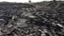 Family's loss shows horror of MH17, CNN journalists break down