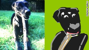 Technically not a selfie, but I uploaded a photo of my dog and somebody drew him. I like that Mikey\'s nose is a heart.