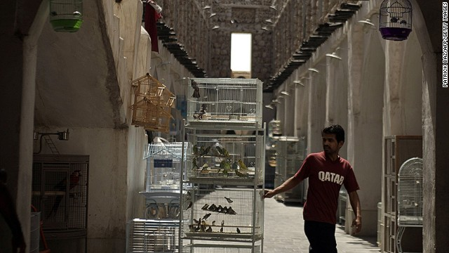 In addition to the many animal attractions situated in malls, the Middle East see a strong trade in exotic pets. In Doha, Qatar, one of the main tourist attractions is an animal souk.