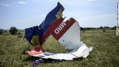 Monitors reach MH17 crash site