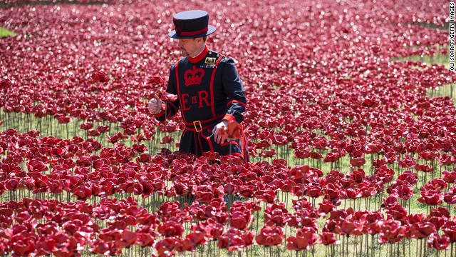 "The poppy display reflects the flower's long association with battlefields because they are known to thrive on earth disturbed by conflict. The symbolism was consolidated in the poem ""In Flanders Fields"" by Canadian military surgeon and artillery commander John McCrae."