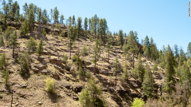 Gila Wilderness near Mimbres, New Mexico, contains landscapes such as hills, mesas, canyons and woodlands.