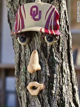 SkyMall -- a retail catalog available on most U.S. domestic flights -- is famous for its quirky retail offerings. Director of merchandizing Darin Geiger says quirky items and sports paraphernalia are both big sellers. This tree face -- donning a football cap -- caters to both needs.