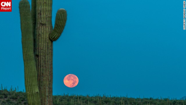 "<a href='http://ireport.cnn.com/docs/DOC-1160275'>Bradley Owens</a> woke up at 3 a.m. to execute this colorful photo of the supermoon in Tucson, Arizona, on Sunday. ""The timing was perfect with the sun rising behind me with a few mountains to shield the direct sunlight,"" he said. ""This helped the sky be as blue as it was with the perfect orange glow to the moon itself. It was much more beautiful in person and very majestic!"""