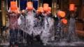 Ice Bucket Challenge activism