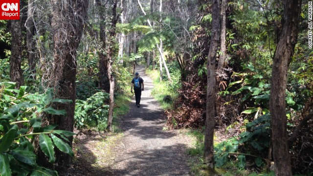 The sprawling trails of <a href='http://ireport.cnn.com/docs/DOC-1122262'>Hawaii Volcanoes National Park</a> will lead visitors to some of the island's most diverse ecosystems, filled with <a href='http://www.nps.gov/havo/naturescience/index.htm' target='_blank'>native terrestrial flora</a> and fauna.