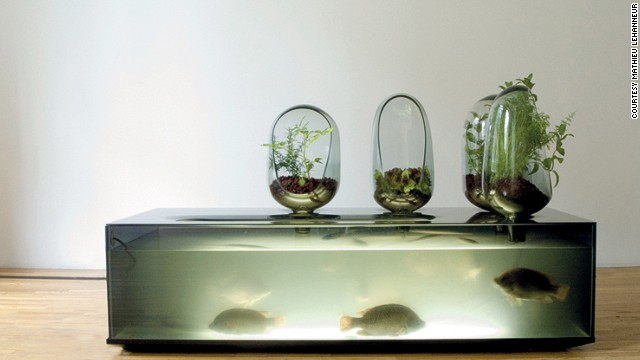 The avant garde designer Mathieu Lehanneur has created a concept called Local River, in which a home aquarium produces both fish and plants that can be killed and eaten