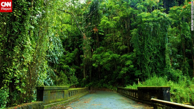 This <a href='http://ireport.cnn.com/docs/DOC-1149171'>moss-covered bridge </a>stretching into the thick canopy of tropical forest leads out to <a href='http://www.gohawaii.com/big-island/guidebook/topics/parks' target='_blank'>Laupahoehoe Point Beach Park</a> on the Big Island's east coast.
