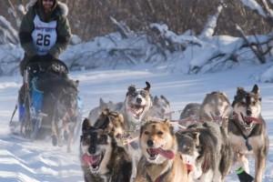 Recorrido en trineo tirado por perros (Canadá)