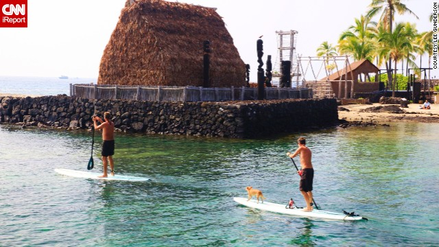 <a href='http://ireport.cnn.com/people/Kalalau123'>Paddle boarding</a> is a popular pastime on the Big Island. Here, two adventurers and a four-legged companion drift gently through the calm waters of Kailua Bay in Kona.