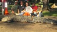 Familia atrapa un caimán gigante en Alabama