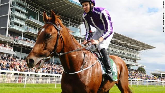 El sobrepeso del caballo Australia, un desafío para los O'Brien