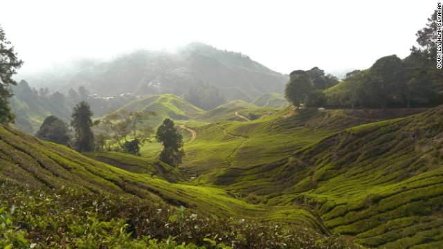 """Just sit back with a cup of hot tea and enjoy the chilly wind and green scenery,"" says Hema Sekaran of Malaysia's <a href='http://ireport.cnn.com/docs/DOC-1165606'>Cameron Highlands</a>. The cool weather makes it a popular escape from the heat in much of the country."