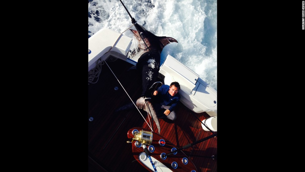 Talk about laboring on Labor Day! Adam Sattar, 17, takes a well-deserved break after reeling in this 693.8-pound swordfish off the coast of Florida.