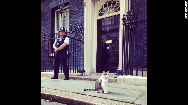 "LONDON: ""Prime Minister David Cameron's cat outside his residence. Apparently Larry the Cat (<a href='http://twitter.com/Number10cat' target='_blank'>@Number10cat</a>) has quite a following on social media."" - CNN's John Dear, September 3. Follow John (<a href='http://instagram.com/johndearcnn' target='_blank'>@johndearcnn</a>) and other CNNers along on Instagram at <a href='http://instagram.com/cnn' target='_blank'>instagram.com/cnn</a>."