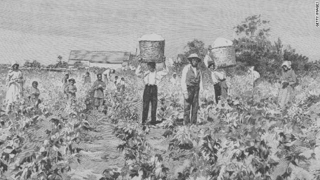 An engraving depicts slaves picking cotton from the fields of a plantation.
