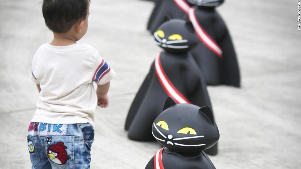 Black Cat Squadron