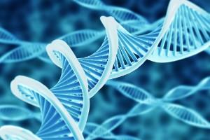 ADN, el futuro del almacenamiento de datos