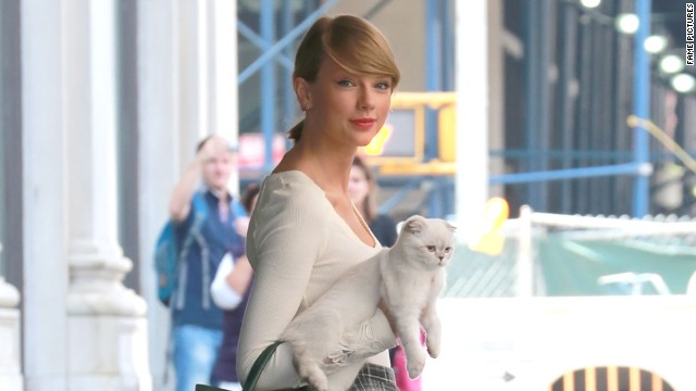 Taylor Swift keeps her friends close and her kitten closer while out for a stroll in New York in September 2014.
