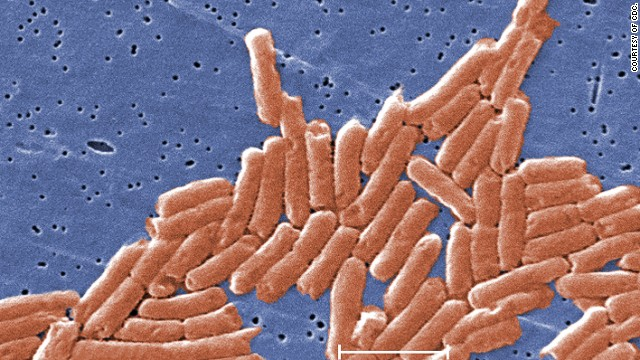 Researchers found that Salmonella enterica bacteria become more virulent and better at causing disease in the microgravity environment of space.