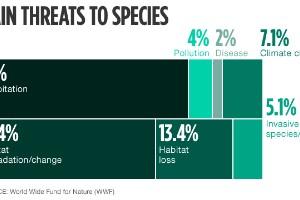 Las principales amenazas contra la fauna