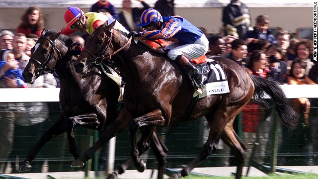 El Condor Pasa (left) was the horse that ignited Japan's passion for the Arc when he finished a close second to French thoroughbred Montjeu in the 1999 race. Nakayama Festa repeated the effort in 2010.