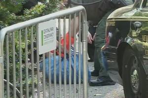 Encuentran un oso muerto en Central Park