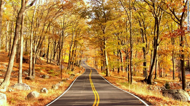 A canopy of crisp yellow and red leaves shade a lonely road in Harriman State Park. With 200 miles of hiking trails, it is the second largest state park in New York.