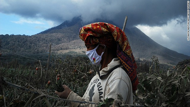 OCTOBER 14 - SUMATRA ISLAND, INDONESIA: A woman wears a face mask as protection against volcanic ash while she harvests chillies and tomatoes at a village in Karo district. Mount Sinabung volcano, which has been<a href='http://cnn.com/2014/02/03/world/asia/indonesia-volcano/'> erupting since February,</a> continues to spew smoke in the background.