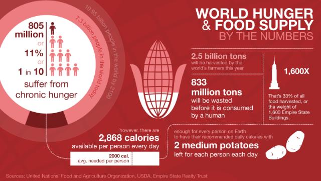 ¿Podemos alimentar a todo el mundo?